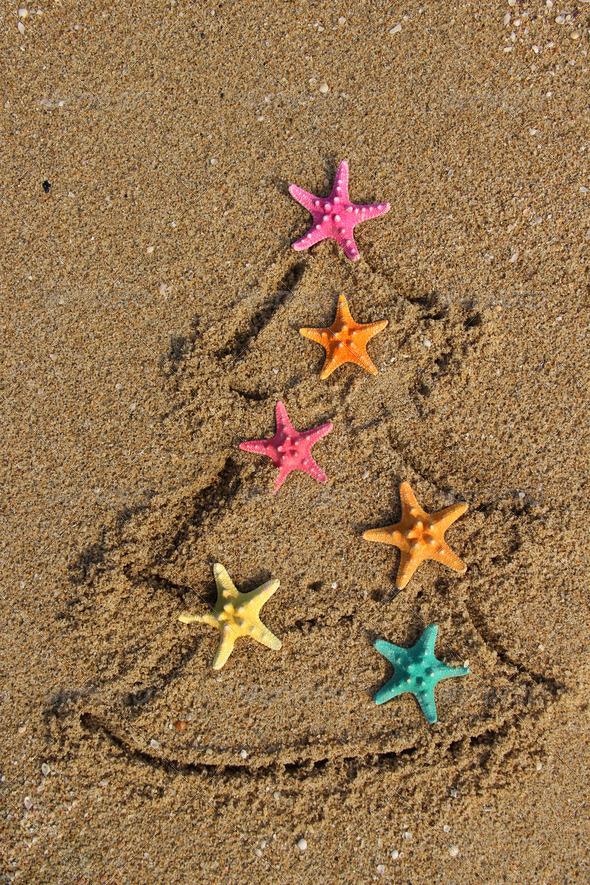 Con estrellas de mar de colores